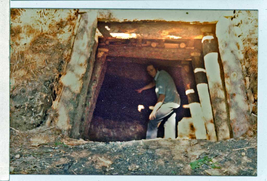 A photo of a Freemine in Oakwood Bottom