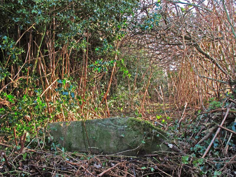 A photo of the remains of a stone stile