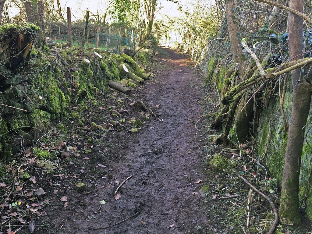 A photo of Oakwood Tramline near Oakwood Mill