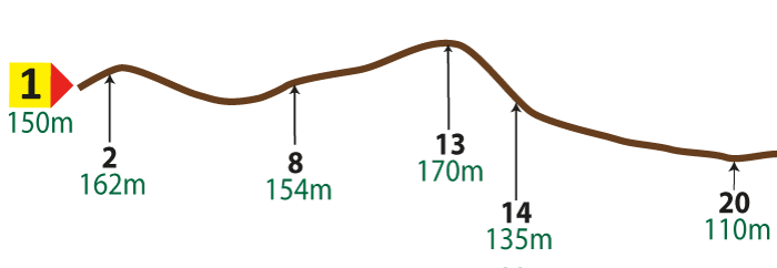 An image showing the Vertical route profile 1 to 20 (not to scale)
