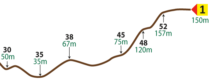 An image showing the vertical route profile from 30 to 1
