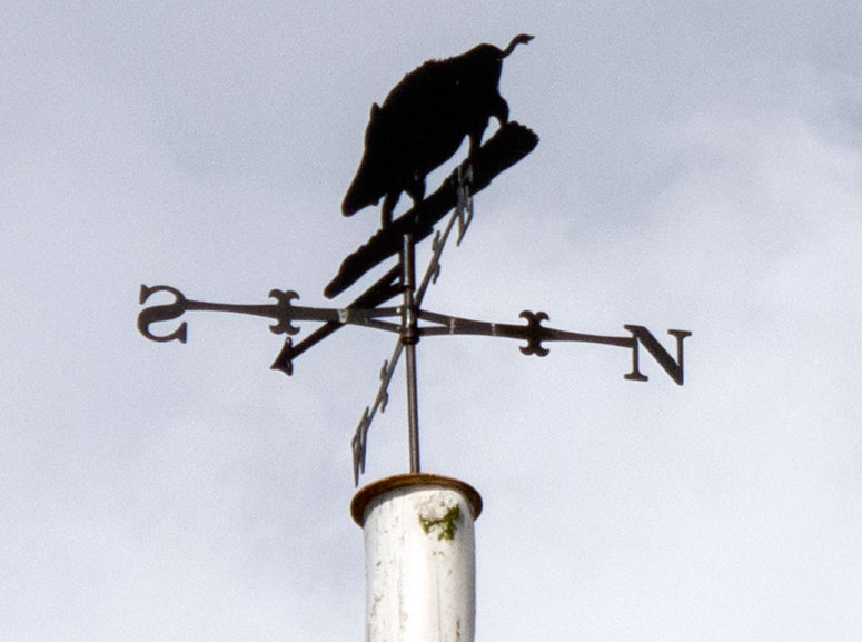 A photo of the weather vane on the Maypole.