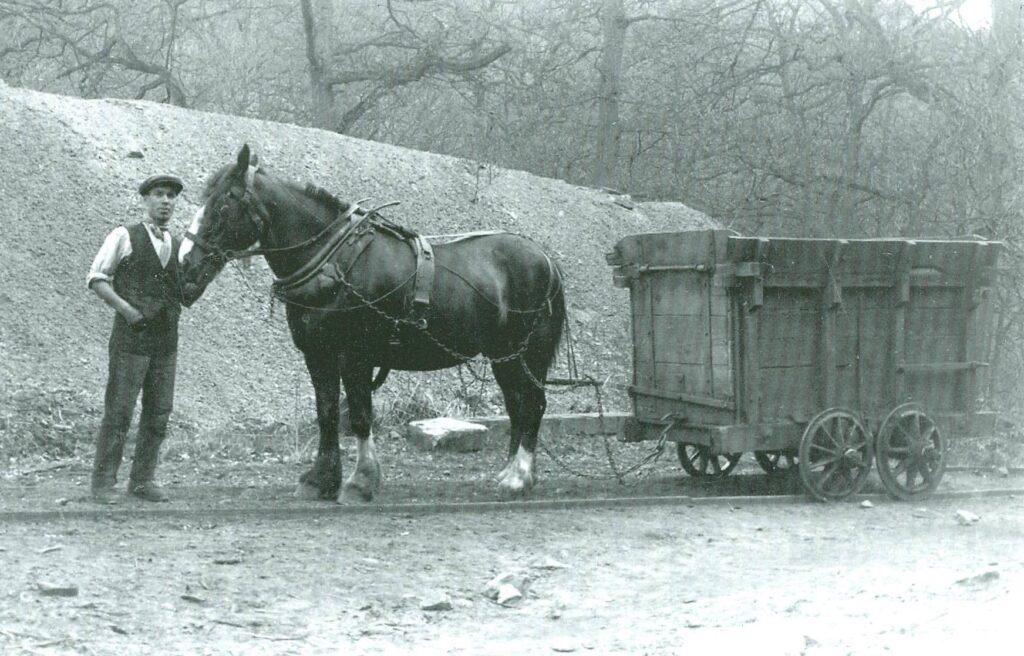 A photo of a horse-drawn trram